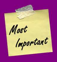 Things that are important to me in life essay